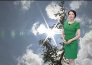 [날씨] 다시 무더위…서울 29도