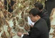 '불산 누출' 구미 특별재난지역 선포…정부 지원 실시