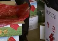 중국산 당근 '박스갈이'해 국산으로 둔갑…3배 폭리