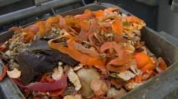 쏟아지는 음식물 쓰레기, 해결방법은 바로…