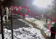 CCTV 없는 아파트 노렸다…전과 총52범 '3인조' 덜미