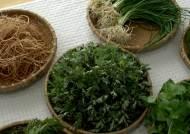 냉이 효능 만큼 먹는 법 중요해…봄나물 식중독에 걸리지 않으려면?
