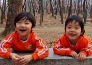 영어 경쟁 대신 곤충과 노는 아이들…유치원 '힐링' 바람
