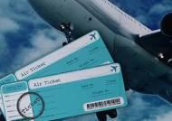 같은 비행기 타도 가격 천차만별…'반값 좌석'의 비결