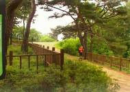 걸어서 서울 한바퀴…서울 둘레길 코스 하나로 잇는다