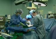 장기이식 면역억제제 안 먹어도 된다…새 수술법 개발