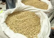 중국 콩으로 국산 친환경 인증, 10년간 학교로 마트로…