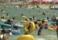 폭염 속 피서 절정…해수욕장 물놀이 인파로 인산인해