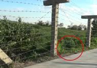 """[단독] 국경에서 만난 북한 병사 """"돈 주세요, 50원만…"""""""