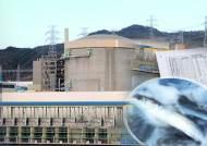국내 원전해역 어류서 세슘 검출량 급증…후쿠시마 영향?