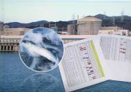 후쿠시마 영향? 국내 원전 부근 어류서 세슘 검출