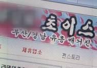 경찰, 18만 명 규모 '성매매 정보 사이트' 운영자 구속