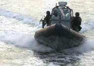 해군·해경, '독도 방어' 합동 훈련…UDT 병력도 투입