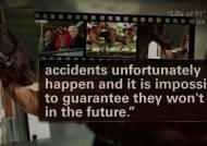 영화 속 호랑이·양들의 혹사…동물학대하는 할리우드