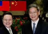 중국-대만 65년만에 당국 회담…정상회담으로 이어지나
