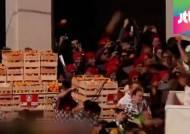 """""""멍들어도 좋다!"""" 오렌지 싸움 벌이는 이탈리아 축제"""