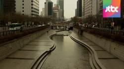 서울시, 청계천 10년 만에 '자연형 생태하천'으로 재복원