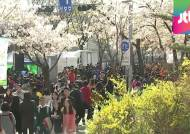 쌀쌀한 날씨에도 한식·봄꽃 나들이 인파…교통 혼잡