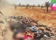 """ISIL """"이라크 정부군 1700명 처형""""…대량학살전 우려"""