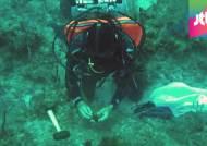 31일간 바다 생활…해양학자 쿠스토, 할아버지 기록 깼다