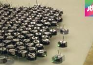 하버드대, 세계 최대 규모 '1024개 로봇 군단' 첫 개발