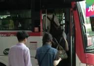 경기지역 버스 노조, 내일부터 전면파업 돌입 예고