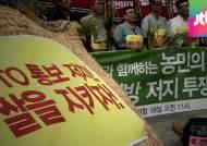 """""""쌀 전면 개방 반대""""…농민들, 무기한 노숙 농성 돌입"""