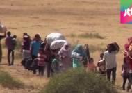 시리아 쿠르드족, 이슬람 국가 피해 터키 국경으로