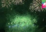 11만발 오색불꽃, 가을하늘 물들인다…여의도 불꽃축제