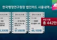 알타리 무에서 명품까지…국책연구원, 법인카드 펑펑