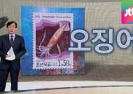 [앵커브리핑] 오징어 북으로 가면 낙지?…남북의 언어 간극