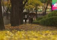 [날씨] 내일 전국 비·찬바람…기온 '뚝'