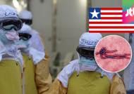 '최대 피해국' 라이베리아, 에볼라 국가 비상사태 해제
