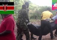 '피의 보복' 알샤바브, 케냐서 채석장 노동자 36명 살해