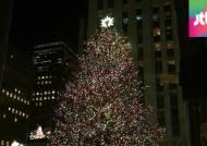 '미리 크리스마스' 82번째 록펠러 센터 성탄 트리 점등식