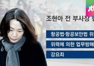 '땅콩 회항' 조현아 오늘 검찰 소환…구속 가능성은?
