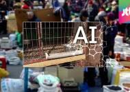 모란시장서 고병원성 AI 발생…당국 '늑장 통보' 논란