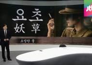 [앵커브리핑] '요초'…대한민국은 요망한 풀과의 전쟁