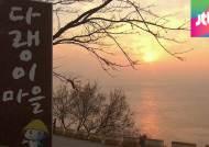[밀착카메라] 물싸움에 얼룩진 관광명소 '다랭이마을'