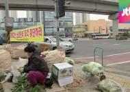[밀착카메라] 노점상 막는 '쓰레기 작전'…주민 불편
