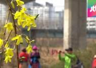 [뉴스 브리핑] 빨라진 '봄의 시작'…37년간 열흘 앞당겨져
