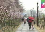 [날씨] '식목일·청명' 전국 곳곳 비…우산 속 꽃향기