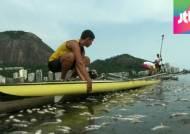 리우올림픽 앞두고 물고기 집단 폐사…환경오염 심각