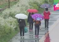 최악의 가뭄에 '반갑다 봄비'…내일 오후까지 이어져