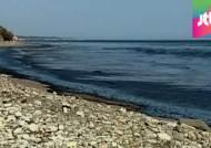 캘리포니아 해변에 기름 '둥둥'…인근 해안공원 폐쇄