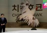 [앵커브리핑] 군 면제 총리 후보…곳곳에 '치킨 호크'
