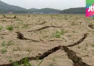 '찔끔' 소나기, 가뭄 해결엔 역부족…장마 늦어질 듯