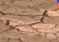"""북한, 가뭄으로 식량난 우려…""""김정은 체제 위협할 수도"""""""