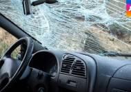 차량 1만 대당 2명, 교통사고 사망…언제 어디서 많았나