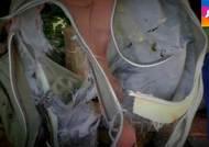 찢긴 잔해, 말레이 실종기 급강하 증거?…커지는 의혹